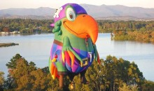 Oh for a parrot instead of Skywhale